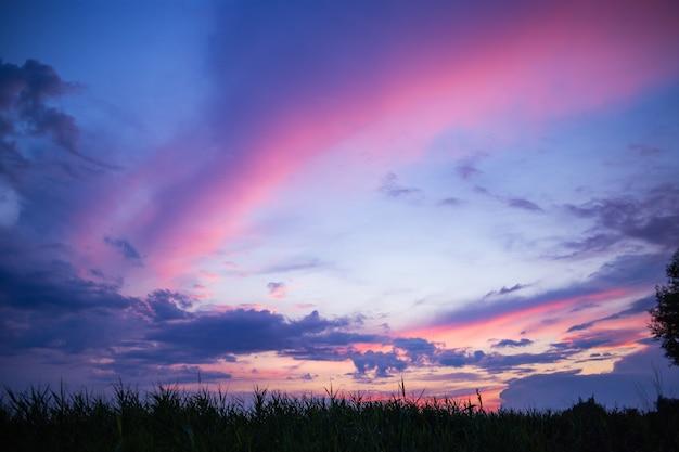 Piękny wielobarwny letni zachód słońca w naturze