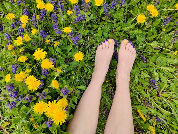 Piękny wielobarwny pedicure na kobiecych stopach z różnymi letnimi kwiatami w kolorze żółtym, niebieskim, fioletowym.