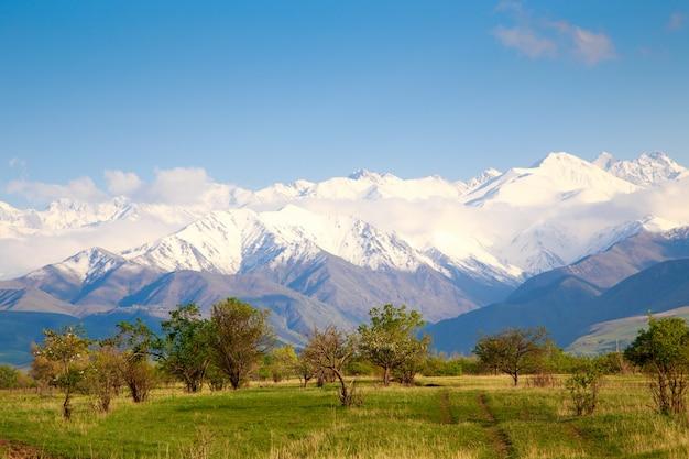 Piękny wiosenno-letni krajobraz. bujne zielone wzgórza, wysokie zaśnieżone góry. zioła kwitnące wiosną. kwitnące drzewa. błękitne niebo i białe chmury.