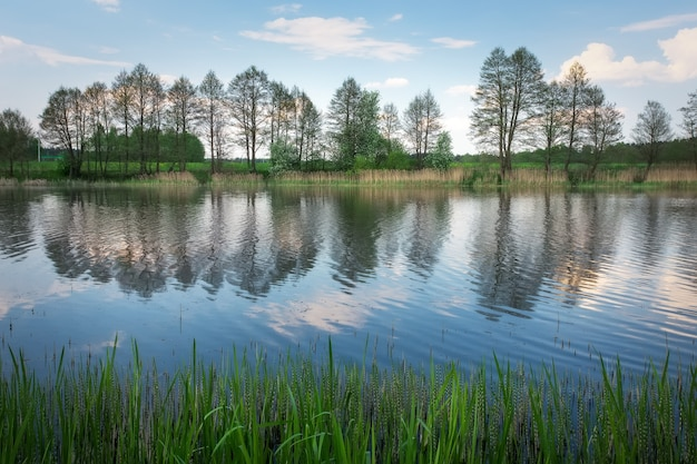 Piękny wiosenny krajobraz z rzeką, drzewami i niebieskim niebem. kompozycja natury