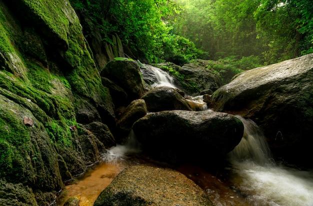 Piękny wodospad w dżungli. wodospad w tropikalnym lesie z zielonym drzewem i światłem słonecznym