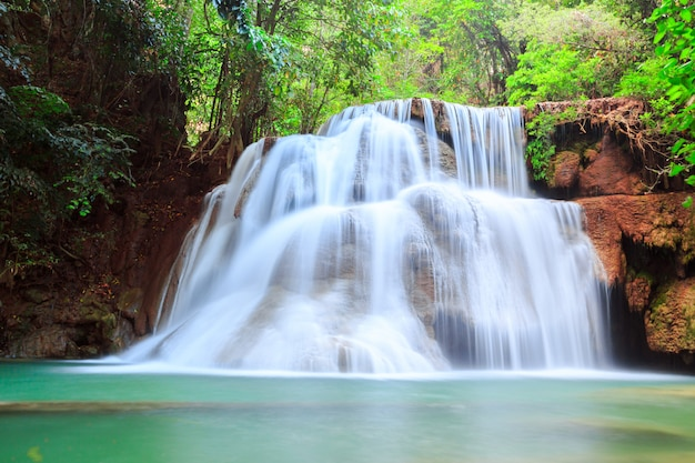 Piękny wodospad w głębokim lesie