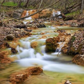 Piękny wodospad w lesie parku narodowego