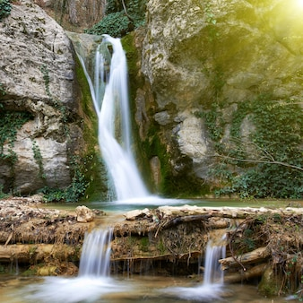 Piękny wodospad w lesie. ruch wody.