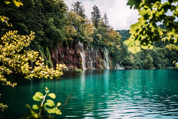 Piękny wodospad w lesie.