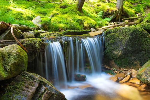 Piękny wodospad w zielonym lesie. kaskada ruchu wody
