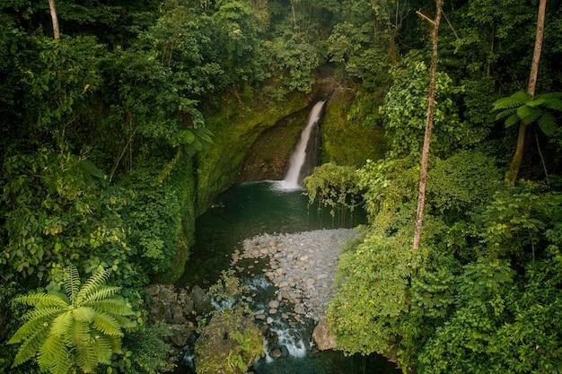 Piękny wodospad ze zdjęcia lotniczego w zielonym lesie