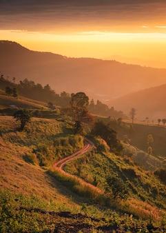 Piękny wschód słońca na zielonym wzgórzu rolniczym ze złotym niebem na wsi