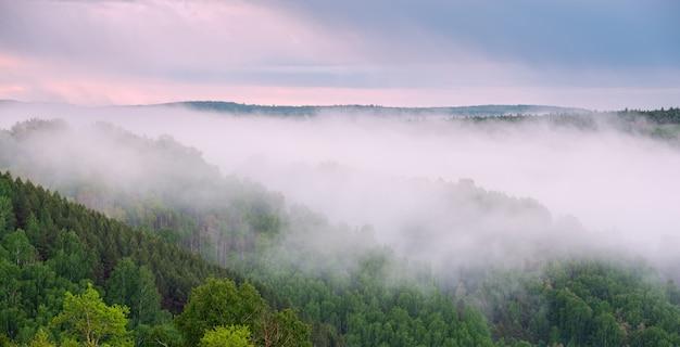 Piękny wschód słońca w lesie z gęstą mgłą. widok z wysokości