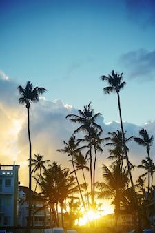 Piękny zachód słońca w kurorcie w tropikach