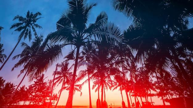 Piękny zachód słońca w nadmorskim kurorcie w tropikach.