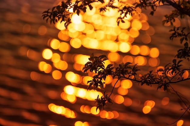 Piękny zachód słońca z gałęzi drzew na pierwszym planie i piękny bokeh