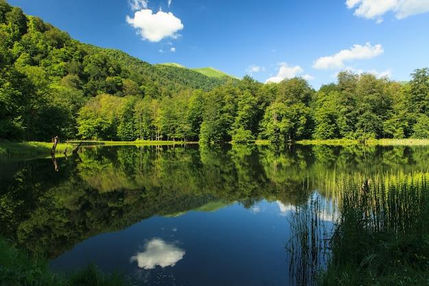 Piękny zielony krajobraz odzwierciedlający w gosh lake, armenia