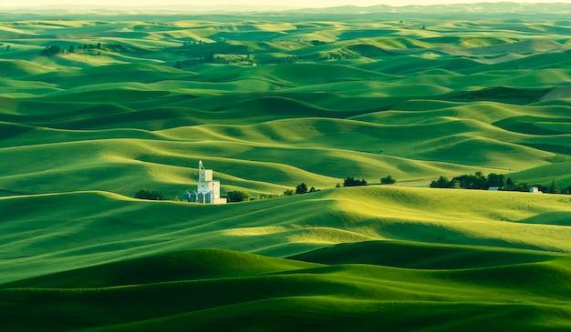 Piękny zielony krajobraz