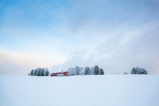 Piękny zimowy krajobraz farmy śniegu