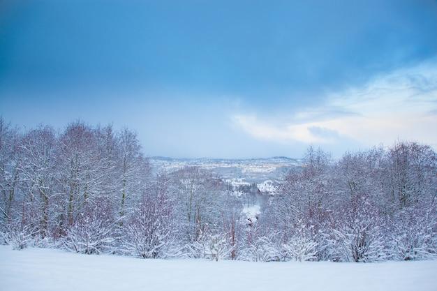 Piękny zimowy krajobraz śniegu trondheim