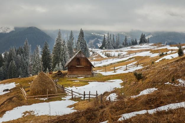 Piękny zimowy krajobraz w górach. carpatians. ukraina