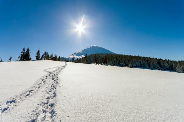 Piękny zimowy krajobraz w górach