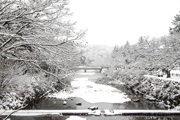 Piękny zimowy krajobraz z pokrytymi śniegiem drzewami i tradycyjnym koreańskim kamiennym mostem