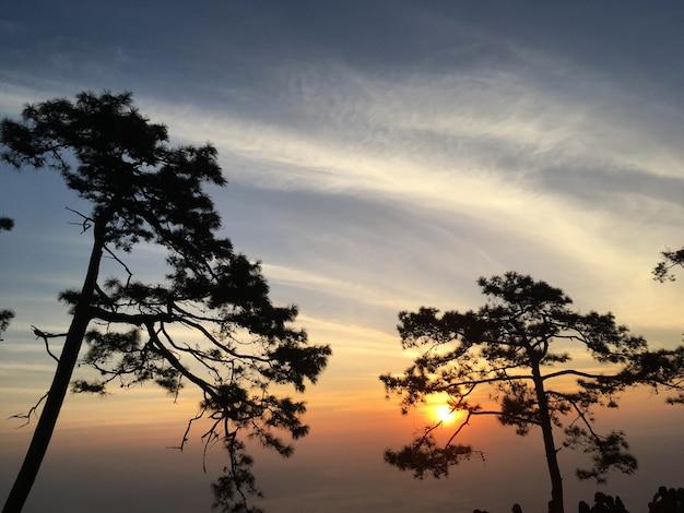 Piękny zmierzch na phukradueng parku narodowym, loei tajlandia.