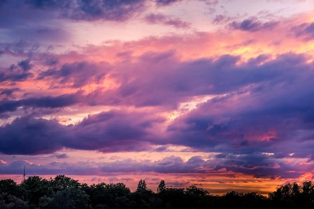 Piękny, żywy zachód słońca niebo i ciemny las krajobraz