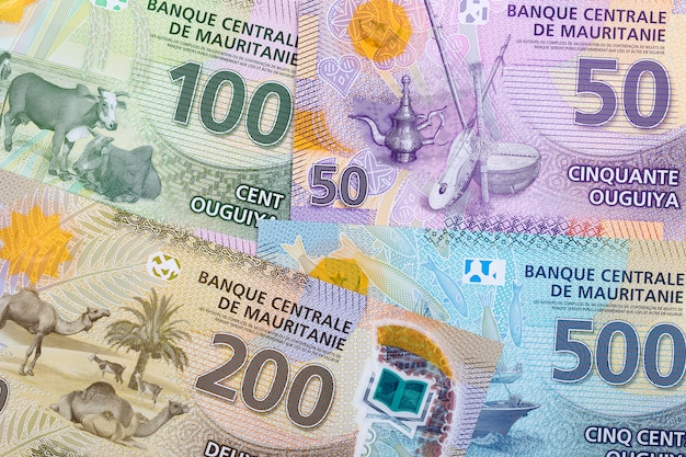 Pieniądze z mauretanii