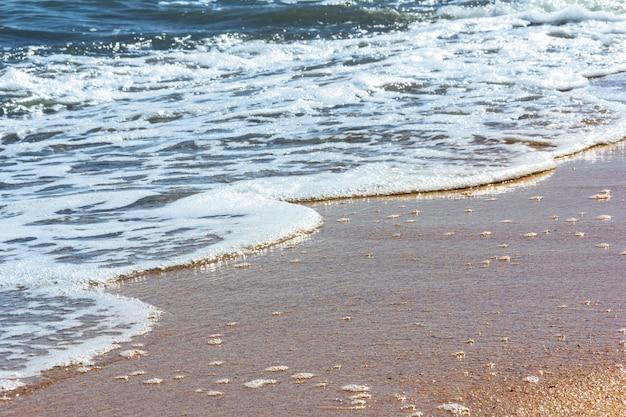 Pienista fala morska toczy się na piaszczystą plażę w słoneczny letni dzień
