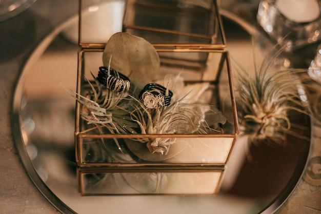 Pierścienie biżuterii w florarium szkodzą roślinom