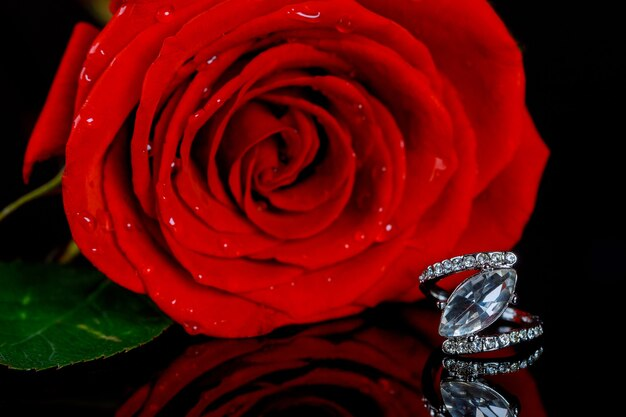 Pierścionek i piękna czerwona róża. walentynki.