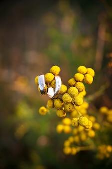 Pierścionek z brylantem na żółtym kwiacie