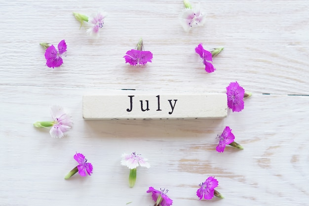 Pierwszy dzień lipca, kolorowe tło z kalendarzem i różowymi kwiatami
