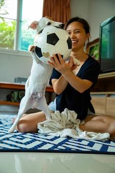 Pies jack russell grający w piłkę w domu.