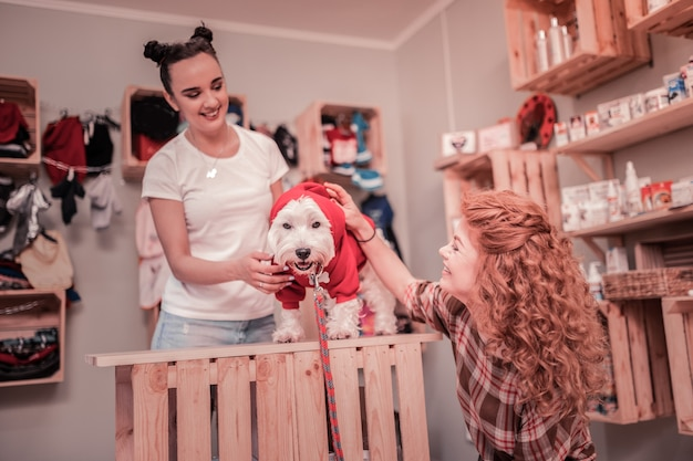 Pies na czerwono. kręcona kobieta uśmiecha się, patrząc na swojego uroczego psa w czerwonym ubraniu