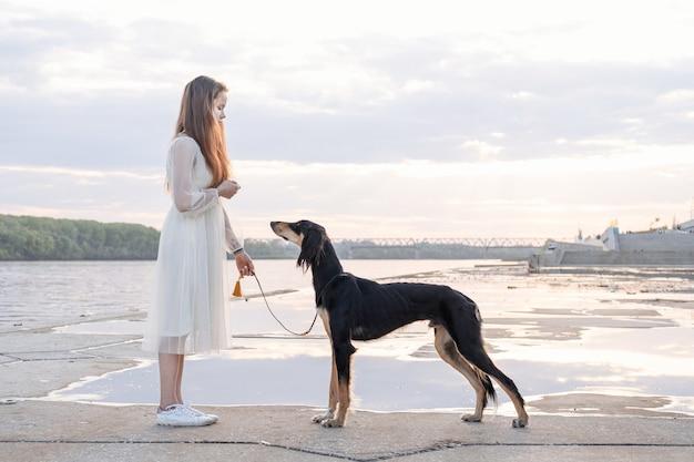 Pies saluki stojący z atrakcyjną młodą kobietą w białej sukni