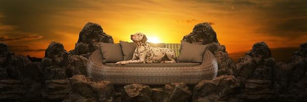 Pies siedzi na szczycie góry renderowania 3d