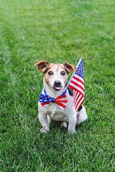 Pies siedzi w trawie z flagą amerykańską