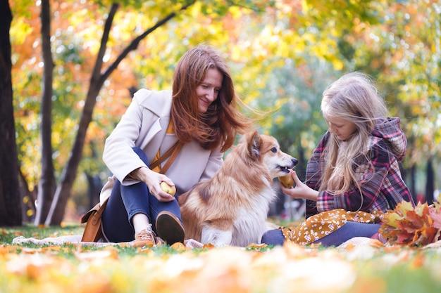 Pies w rodzinie - piękny puszysty corgi na zielonym trawniku i mama z córką