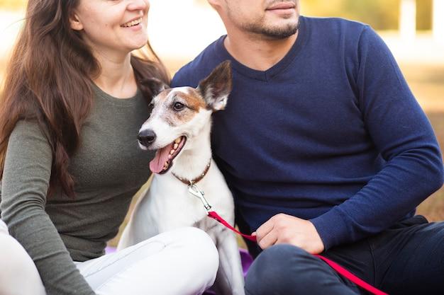 Pies z właścicielami w parku