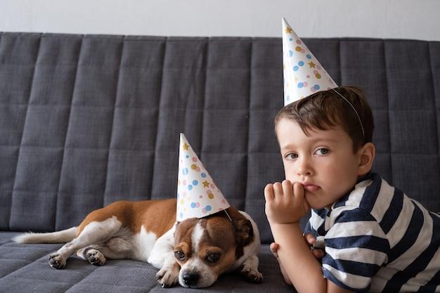 Pies zabawny ładny smutny chihuahua z chłopcem w wieku przedszkolnym. urodzinowy pies w czapce. wszystkiego najlepszego z okazji urodzin.