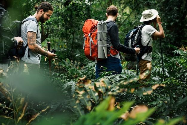 Piesi trekkingowi razem w lesie