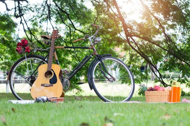 Piknik kosz wakacje wypoczynek styl życia koncepcja