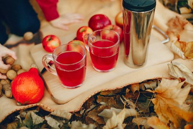 Piknik rodzinny park jesienią