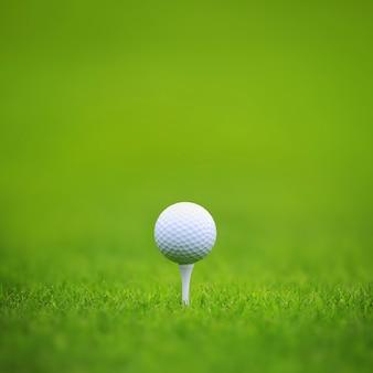 Piłeczka golfowa na tee na zielonej trawie w tle pola golfowego, tła dla transparentu foth kopia miejsce na tekst