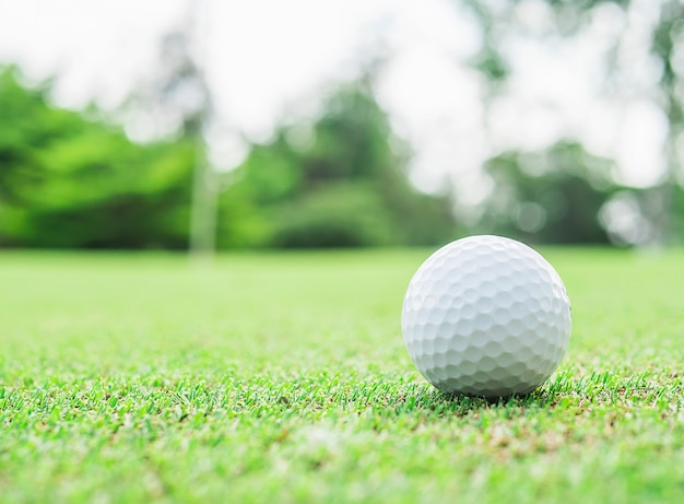 Piłka golfowa na zieleni z zamazanym wałkowym flagstick i zielonym drzewnym tłem