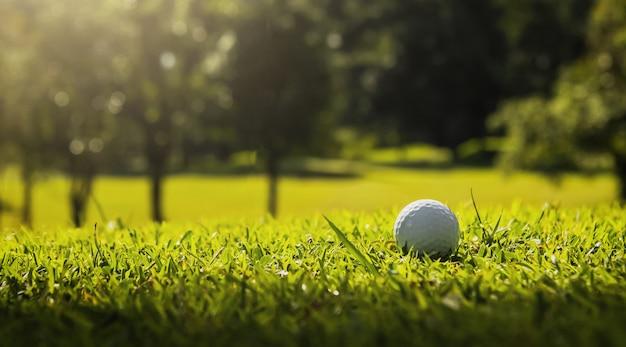 Piłka golfowa na zielonej trawie z światłem słonecznym