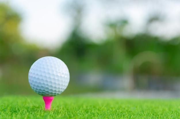 Piłka golfowa z różowym trójnikiem na zielonej trawie przygotowywającej bawić się przy polem golfowym