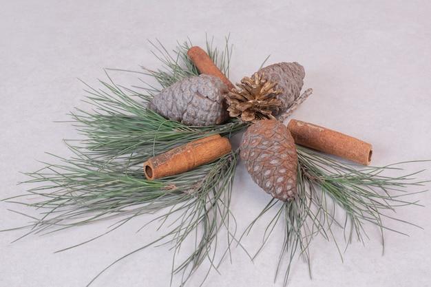 Pinecone z zieloną gałęzią drzewa na białej powierzchni
