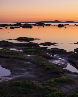 Pionowe, duże ujęcie skał pokrytych mchem na brzegu podczas złotej godziny