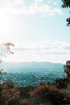 Pionowe odległe ujęcie widoku miasta otoczonego drzewami pod bezchmurnym niebem