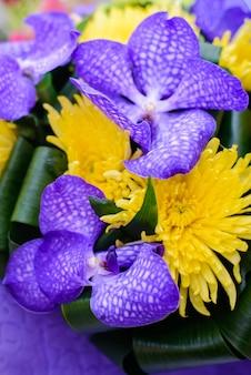 Pionowe tło z pięknym jasnym fioletowym i żółtym zbliżeniem kwiatów